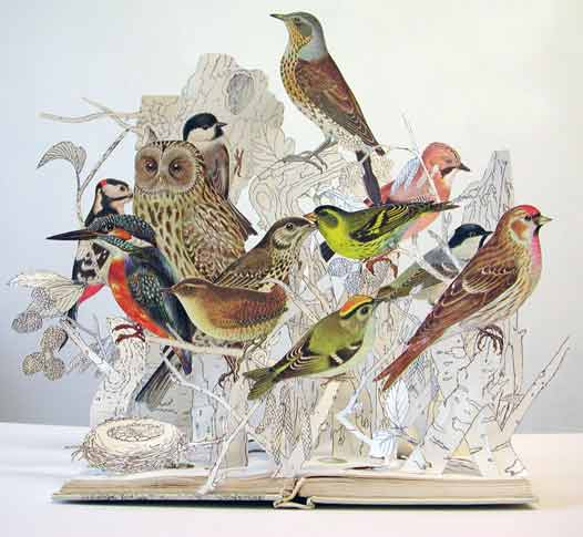 Su Blackwell – The Illustrative Book of Birds 2008