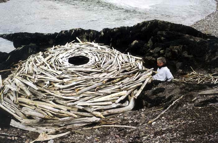 Andy Goldsworthy a scene from Rivers and Tides