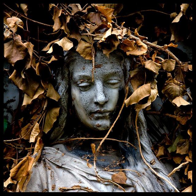 Autumn dreams by onkel_wart