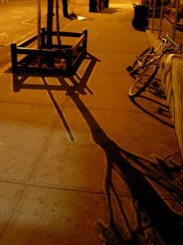 Ellis Gallagher, Tree, Dumbo, Brooklyn, NYC 2007