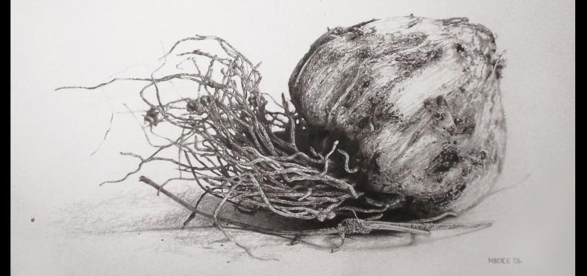 Ui, drawing by Marike Kleynscheldt