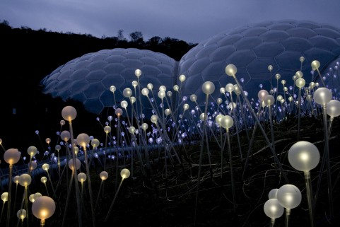 Bruce Munro Field of Light Eden Project3