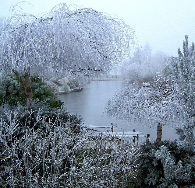 Winter Wonderland 2 by Art Rock (Hennie)
