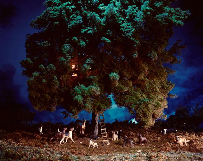 Treehouse 2004 by Lori Nix
