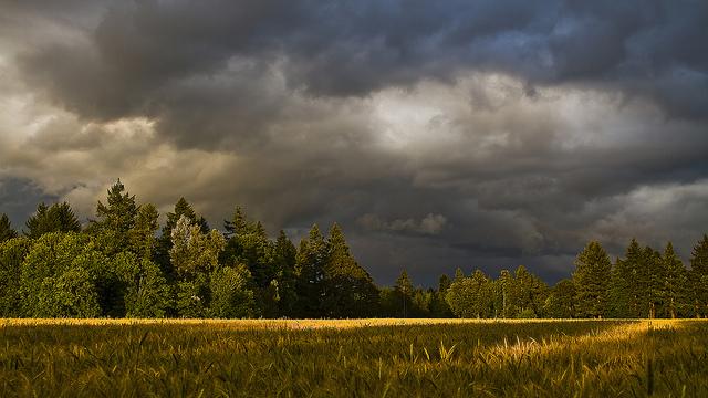 Summer Sunset by Kyle Kruchok on Flickr